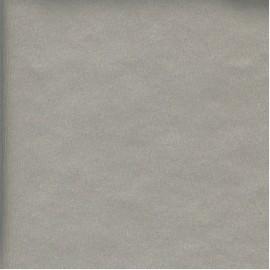 Papier Métal-X Brossé Argent 68,5x50 cm