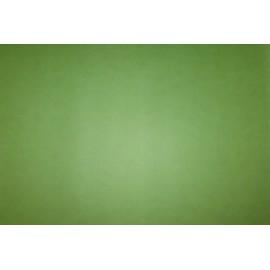 Boréal Vert Amande 50 X 70 cm