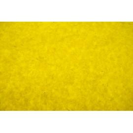 Lokta jaune tigre