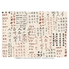 Papier imprimé Ecriture Orientale 50x70cm