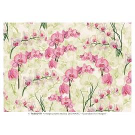 Papier imprimé Orchidées 50x70cm
