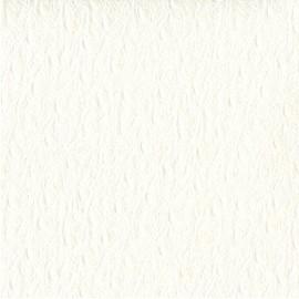 Papier cuir ostra blanc 68,5x100 cm