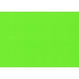 Hype Vert 50x70cm