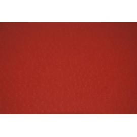 Autruche rouge 70x100