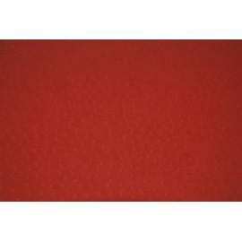 Autruche rouge 50x70