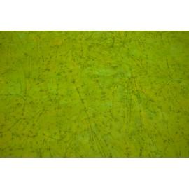 Batik vert clair