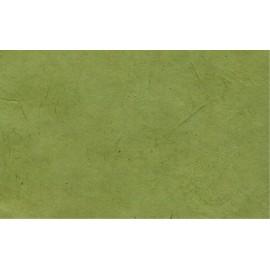 Lokta vert olive