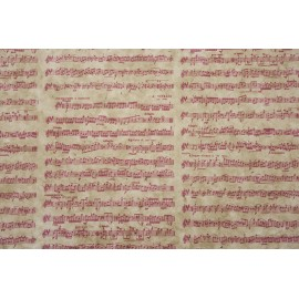 Notes de musiques blanc rosé sur framboise