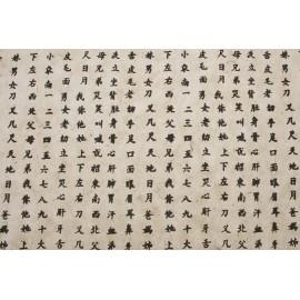 Lokta blanc écriture Asiatique
