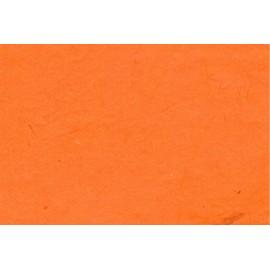 Lokta orange