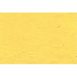 Lokta jaune citron vif