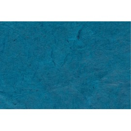 Lokta bleu Outremer
