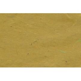 Lokta vert olive foncé
