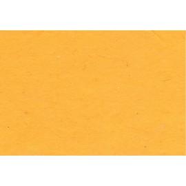 Lokta jaune d'or