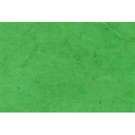 Lokta vert franc