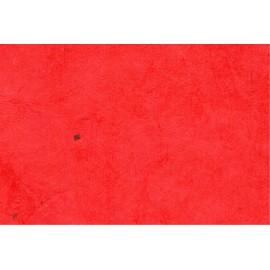 Lokta rouge