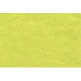 Paquet 10 feuilles A4 vert clair